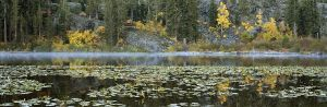 Lilly Lake Fall Pano.jpg