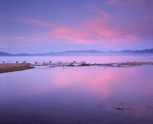 Tahoe Tributary Sunset.jpg